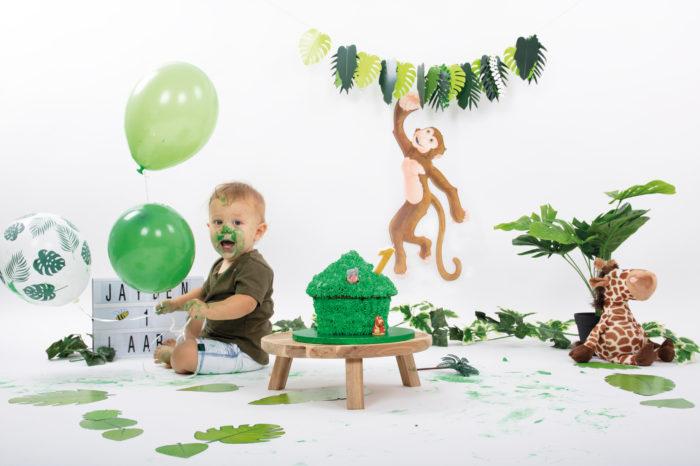 portfolio cakesmash jongetje met ballon en jungle dieren