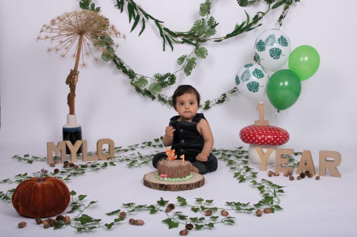 portfolio cakesmash jongetje oerwoud vos op taart