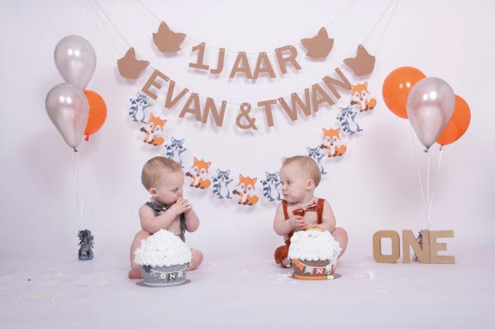 portfolio cakesmash tweeling jongetjes