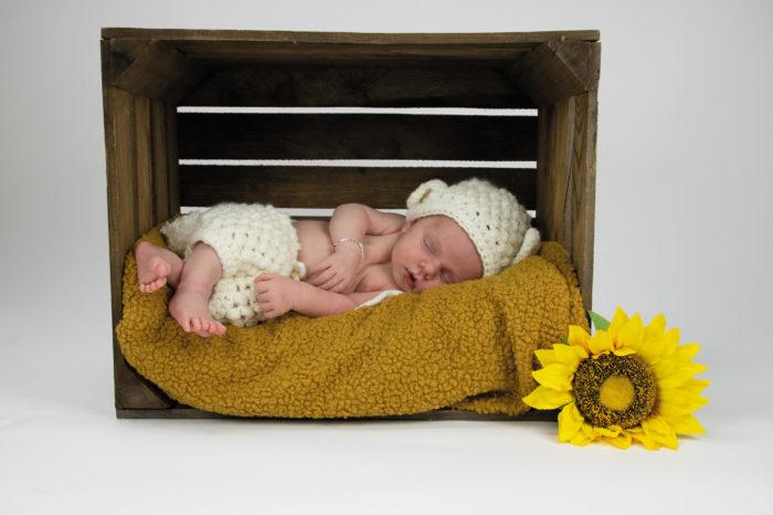 portfolio-pagina-newborn
