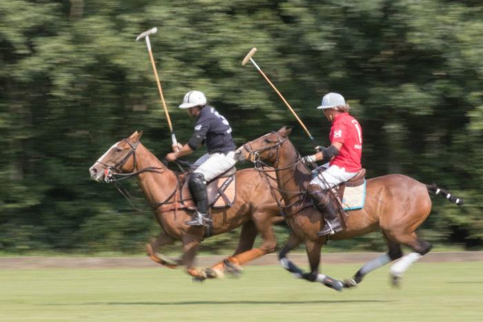 portfolio sport paardenpolo 2 paarden wie is de snelste